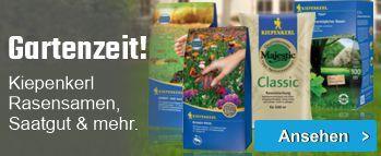 Gartenzeit! Kiepenkerl Rasensamen, Saatgut & mehr