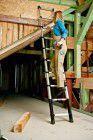 ZARGES Teleskop-Anlegeleiter 3,8m, 12 Sprossen